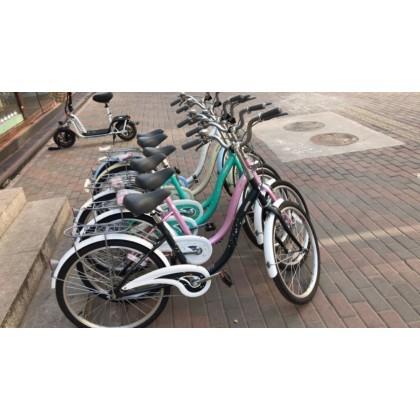 香河捷安特自行车代步车