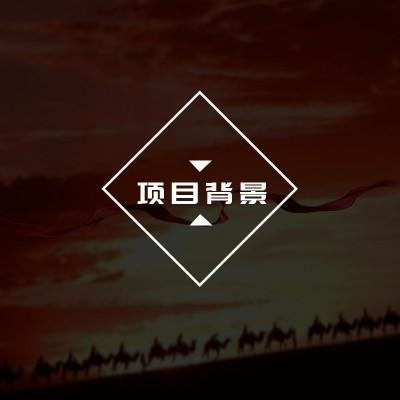 丝路天使艺术团项目背景